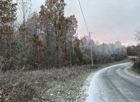 104.55+/-acres unrestricted wooded property