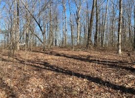 2.74+/-acres with Pristine View Over looking Pelham Valley