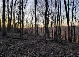 12+/-acres. Incredible bluff views.