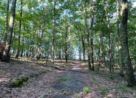 20.52+/-acres with Beautiful Mountain Views
