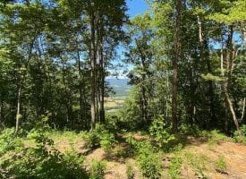 20.63+/-acres with beautiful scenic views of the Tennessee mountains.