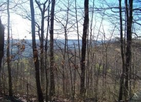 52.54+/-acres located on top of the beautiful South Pittsburg Mountain.