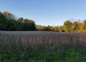 53.52+/-acres Mixture of farm land and wooded hunting land bordering over 1000 feet of the Sequatchie River.