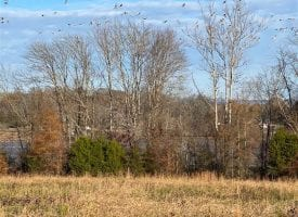 6.79+/-acres located on the Tennessee River.